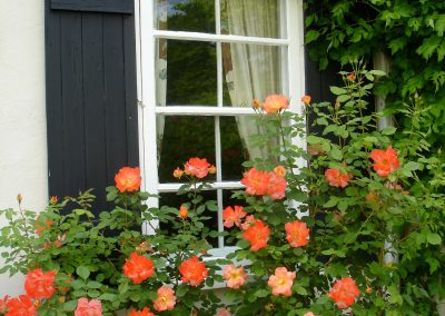 Avalon Niagara-on-the-Lake Window Garden